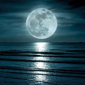 Full Moon (an Vollmondtagen)